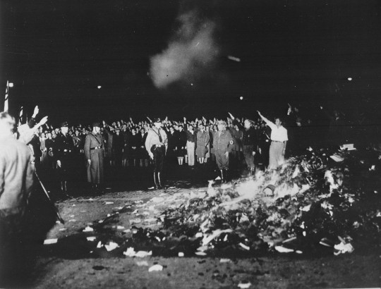 http://en.wikipedia.org/wiki/Nazi_book_burnings