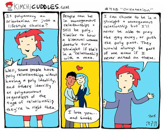 http://kimchicuddles.com/post/122795095660/is-polyamory-an-orientation-or-just-a-lifestyle
