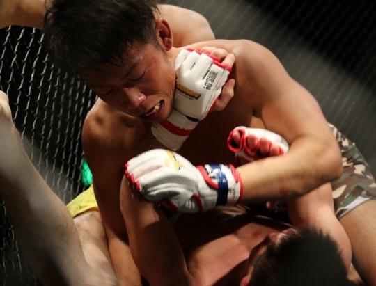 mma_grachan_mixed_martial_arts_japan_martial_arts_cage_gloves_maza-1041257.jpg!d