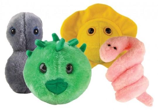 Gonorrea, clamidia, herpes, sifilis