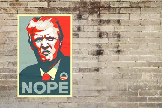 trump_donald_trump_donald_president_usa_politics_republican_election-1263437.jpg!d